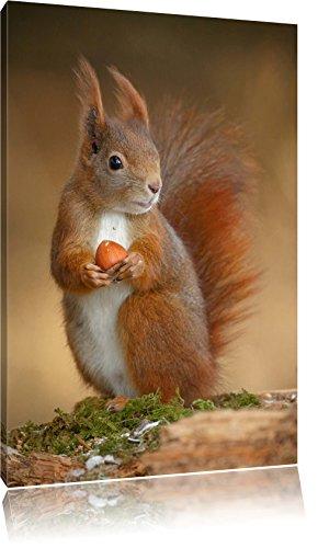Pixxprint LFs7875_60x40 kleines Eichhörnchen mit knackiger Nuss fertig gerahmt mit Keilrahmen...