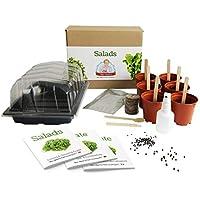 Ensaladas - [Mrs Henri's Plant Growing Kit]. Cultiva 6 ensaladas sabrosas desde su semilla. El regalo perfecto para cualquiera que disfruta cocinando y desea tener su propio jardín