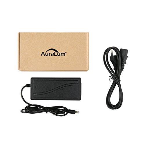 Auralum 12V 5A 60W Adaptador de alimentación del transformador de eléctrica 3528 5050 Manguera RGB cadena ligera tira de cinta de tira del LED