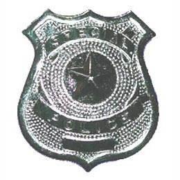 FBI-Abzeichen zum Anstecken, silber (Abzeichen Fbi-agent)