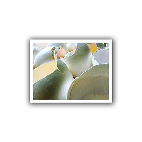 Artwall Dean Uhlinger 'Egg coquillages' Unwrapped Plat encadrés, 18par 55,9cm, peut contenir 14par Image de 45,7cm