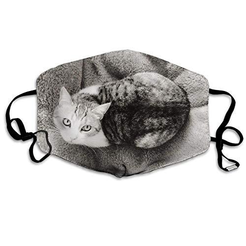 Anti-Staub-Maske für Männer und Frauen, Katze, die auf dem Teppich liegen, Mundmaske unisex