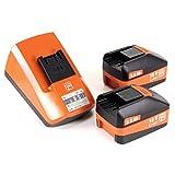 Fein 71161161000 Bohrschrauber ASCM 18 QM | 4-Gang Akku-Bohrmaschine mit bürstenlosem Motor | 2X Li-Ionen Akkus 18V 5Ah, 90 W, 18 V, Orange Test