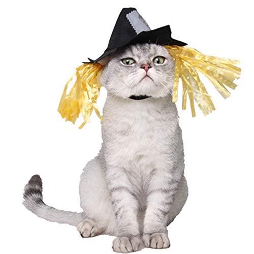 pet - produkten Halloween schmuck Halloween - Festival: Hund hat Nichts Tuch Vogelscheuche Katze Hut