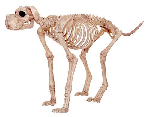 Crazy Bonez Skelett Hund–Bruiser Bonez
