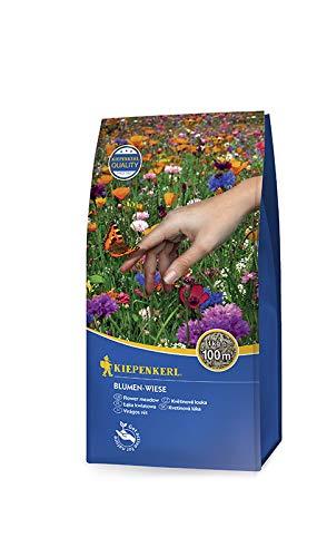 Rasensamen - Blumen-Wiese 1 kg von Kiepenkerl