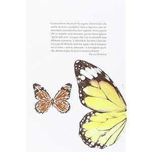 La meravigliosa vita delle farfalle. Come nascono, come si trasformano, cosa possiamo imparare dagli insetti più belli