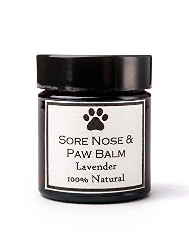 The Clovelly Soap Balsamo per Cani di Tutte Le Razze alla Lavanda Lenisce i Cuscinetti e Zampe Contro la Pelle secca e prurito Barattolo da 30g Prodotti Naturali al 100%
