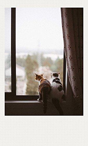 LQZ Ausstechform Katze Ausstechformen Ausstecher Keksausstecher Edelstahl Backen Fondant Cookie Keks - 3