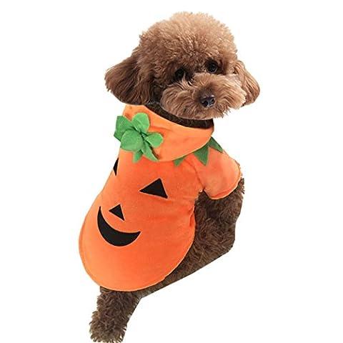Costume D'animal Familier D'Halloween, Legendog Sourire Poil De Citrouille Costumes D'Halloween Vêtements Pour La