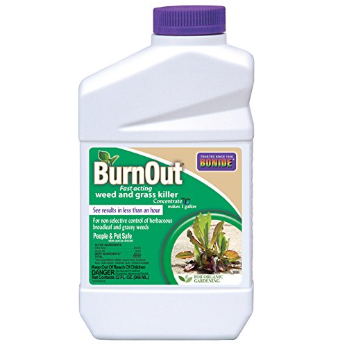 bonide-products-inc-organic-weed-grass-killer-qt-concentrate
