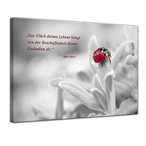 Bilderdepot24 Leinwandbild mit Zitat – Das Glück deines Lebens – (Marc Aurel)