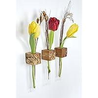 Fenstervase Buche gestockt Blumenvase *