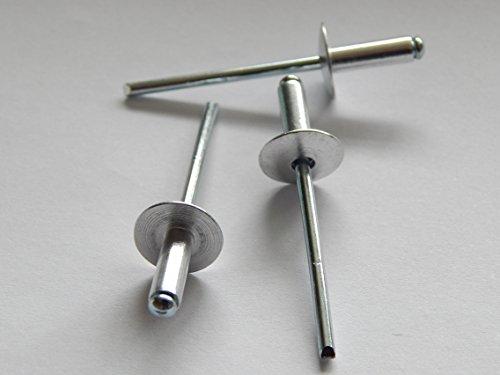 Stahl 12 (100 Stück Blindnieten Popnieten Alu/Stahl 4,0x12 mm Nieten Großkopf K12)