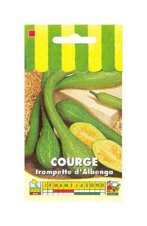 Les Graines Bocquet - Graines De Courge Tromba D'Albenga - Graines Potagères À Semer - Sachet De 3Grammes