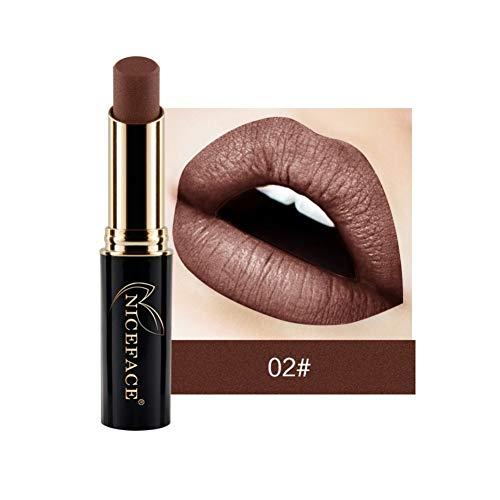 Missoul Metallic Velvetines Liquid Matte Lipstick, Lipstick Waterproof Long-Lasting 24 Colors- Super Lustrous Lipstick (A2) 1080p High Gloss