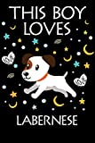 This Boy Loves Labernese Notebook : Simple Notebook,  Awesome Gift For Boys , Decorative Journal for Labernese Lover: Notebook /Journal Gift,Decorative Pages,100 pages, 6x9, Soft cover, Mate Finish