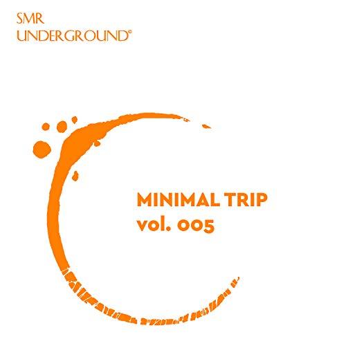 Minimal Trip Vol.V -