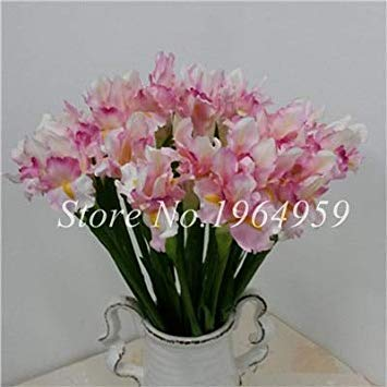 Mini fiore artificiale dei 100 pc iris bonsai potting fiori bonsai per la casa di cerimonia nuziale del partito decorativo così bella e colorata: 7