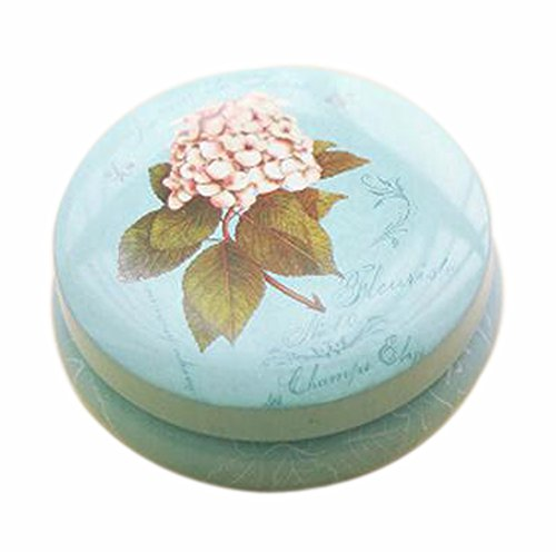 Lot de 2 Pratique Tins Stockage thé / café / Sucre Canisters Gros Fleur Bleu