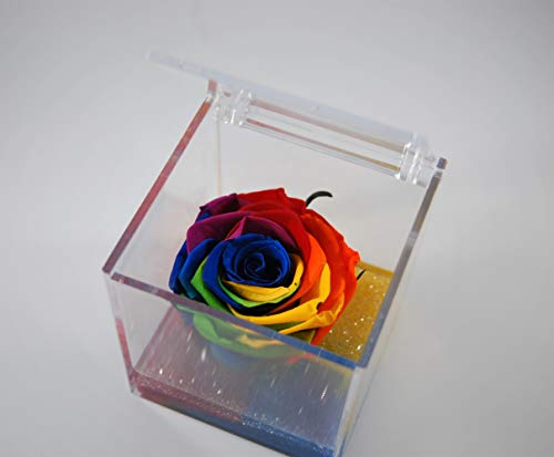 Rosa stabilizzata 8x8x8 cubo vera profumata, senza bisogno di acqua e luce (multicolor)