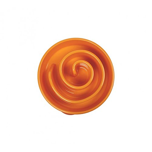 Outward-Hound-Kyjen-51001-Fun-Feeder-Slow-Feed-Interactive-Bloat-Stop-Dog-Bowl-Large-Orange