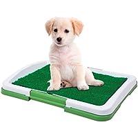Dominiti Perros de WC en verde/Perros de WC/Viaje para Perros/Césped Artificial