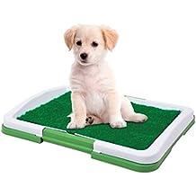Dominiti Perros de WC en verde/Perros de WC/Viaje para Perros/Césped