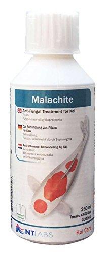 Koi Care Malachite Green, 250 ml - Bei äußerem Pilz- und Parasitenbefall