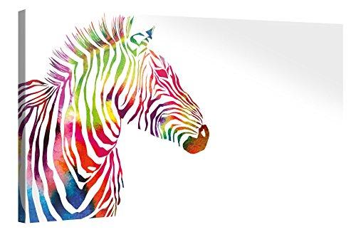 Premium Kunstdruck Wand-Bild – Colourful Zebra – 100x50cm XXL Leinwand-Druck in deutscher Marken-Qualität – Leinwand-Bilder auf Holz-Keilrahmen als moderne Wohnzimmer-Deko …
