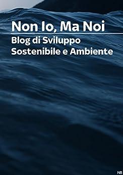 Non Io Ma Noi | Blog di Sviluppo Sostenibile e Ambiente di [Bardella, Noemi]
