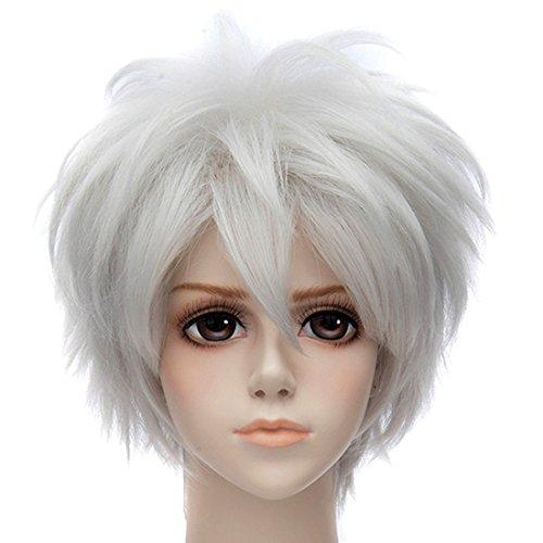 Neue Silber-Weiß / Grau Gerade Perücke Anime Kurze Partei Cosplay Perücke (Perücke Kurze Silber)