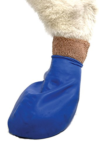 Pawz Dog Boots M,12 Pack, Blue 3