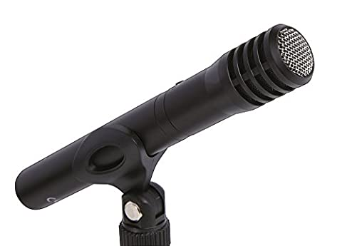 Tascam TM-60 – Battery-powered condenser microphone