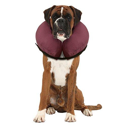 iCollr - El Collar Inflable - Collar Protector para Perros y Gatos...