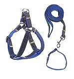Fengding Hundeleine, Halsbänder/Geschirre / Leinen, Running Dog Lead Rope, Haustier Training/Kletterleine, geeignet für Kleine, mittlere und große Haustier Größe, Größe XL in blau