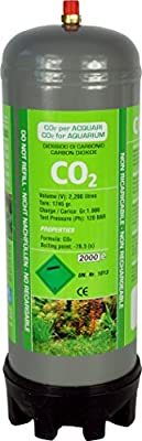 aquaristic.net CO2 Einwegflasche 1 kg passend für JBL Einwegsystem (ersetzt 2X JBL U500)