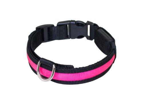 """Hunde Leuchthalsband LED Halsband Hundehalsband Hunde-Halsband """"Zandoo"""" Leuchthalsband für Hunde inkl. Batterie in der Farbe pink Haustiere Katzen Größe S (ca. 35-40 cm) NEU von der Marke PRECORN"""