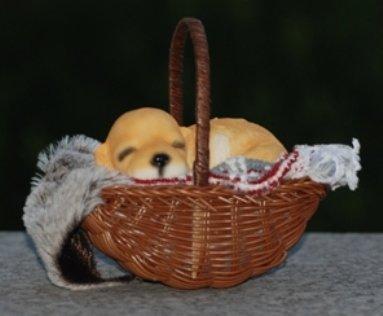 Dekofigur Hund im Korb - Welpe, Korb, Kissen