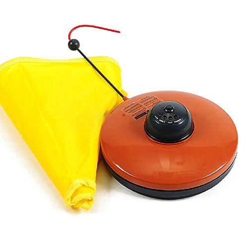 chaton-pour-animal-domestique-electronique-4-vitesses-jouer-cat-toys-undercover-fibre-mouse-jouets-e