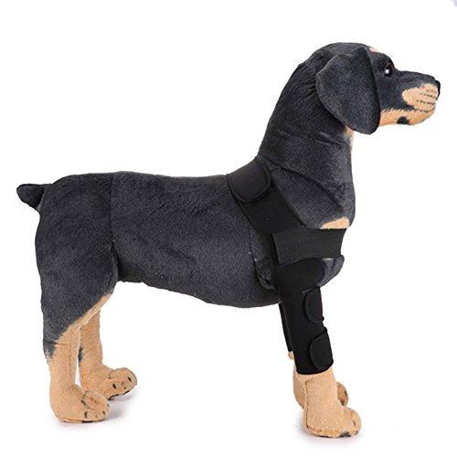 HanDingSM Hunde Ellenbogenbandage,Haustier Beinbeinstütze,Hundebein Ärmel (M, Schwarz)