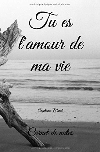 Carnet de notes: TU ES L'AMOUR DE MA VIE - 100 pages