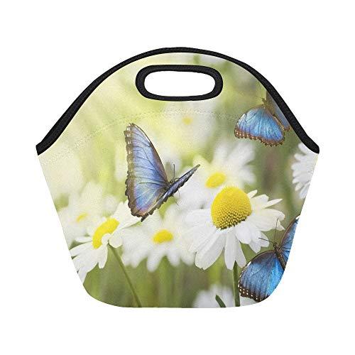 Isolierte Neopren-Lunchpaket Flying Butterflies Flowery Sunny Meadow große wiederverwendbare thermische dicke Mittagessen-Tragetaschen für Lunch-Boxen für im Freien, Arbeit, Büro, Schule Butterfly Meadow Box