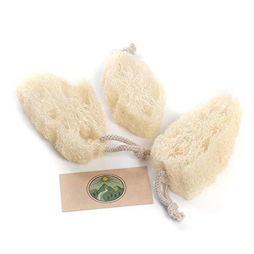 Luffa se ha establecido como la mejor esponja por varias razones:    En contacto con el agua, la esponja vegetal se hincha y suaviza. Al mismo tiempo, sigue siendo lo suficientemente rugoso como para eliminar la suciedad persistente de las propiedad...