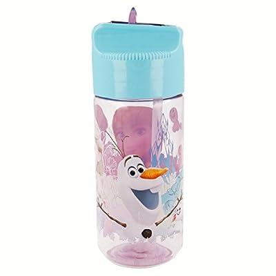 Disney Frozen Botella cantimplora tritan hidro pequeña 450 ML (STOR 86836) de Stor
