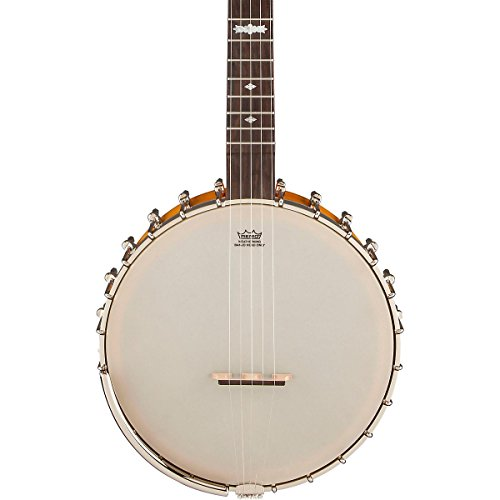 instruments-divers-gretsch-g9455-dixie-special-banjos