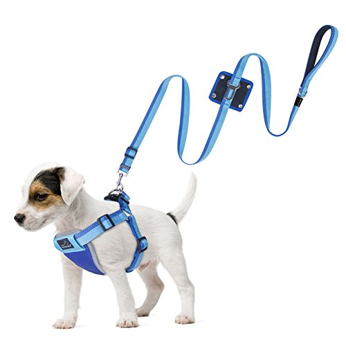 no-pull-dog-harness-lead-set-petbaba-no-escape-reflective-seat-belt-leash-auto-harness-combo-for-dog