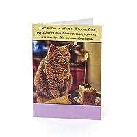 UK Greetings Funny Cat Birthday Card