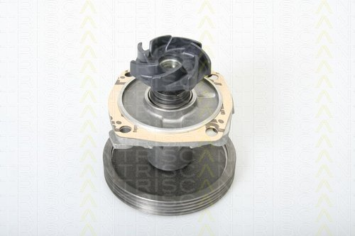 Preisvergleich Produktbild Triscan 8600 15010 Wasserpumpe