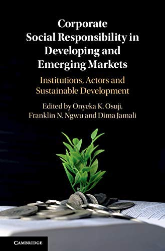 Corporate Social Responsibility in Developing and Emerging Markets: Institutions, Actors and Sustainable Development (English Edition)